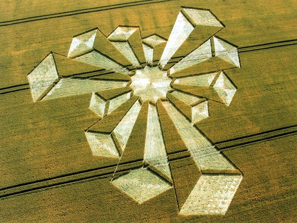 Another World Crop Circle Arts Drawn by Humans (28)