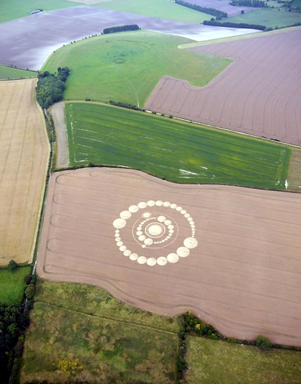 Another World Crop Circle Arts Drawn by Humans (29)