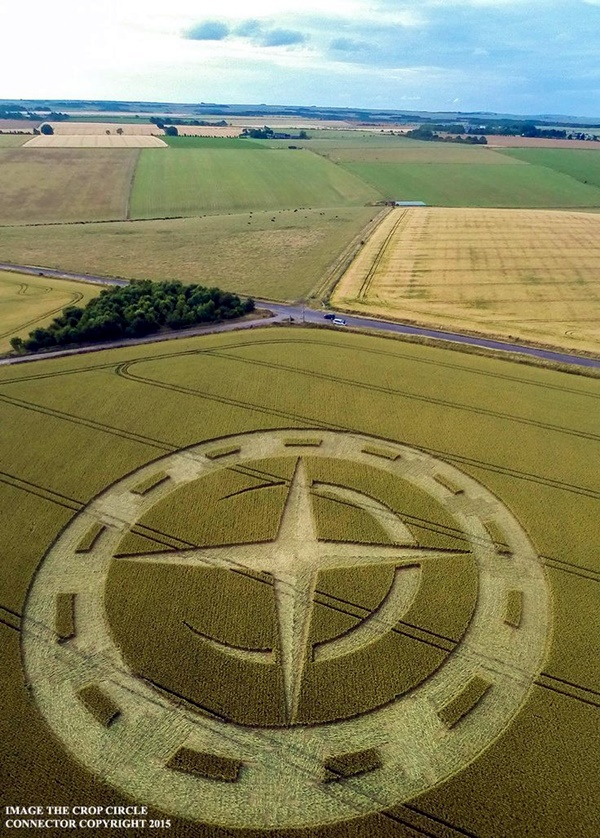 Another World Crop Circle Arts Drawn by Humans (3)