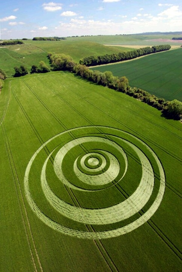 Another World Crop Circle Arts Drawn by Humans (30)