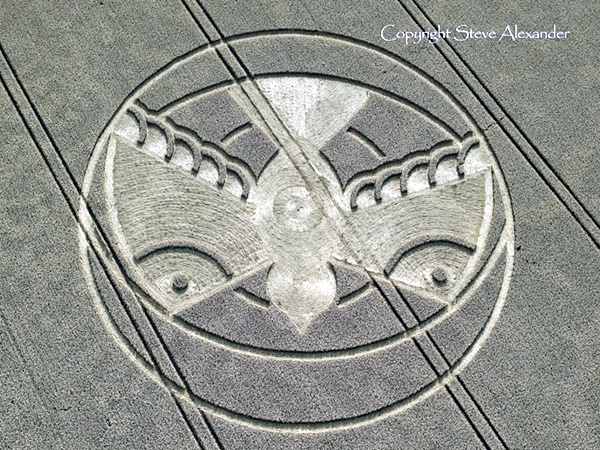 Another World Crop Circle Arts Drawn by Humans (31)