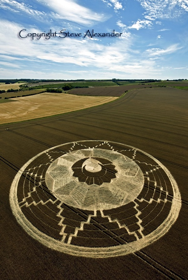 Another World Crop Circle Arts Drawn by Humans (33)