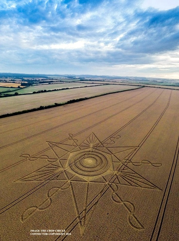Another World Crop Circle Arts Drawn by Humans (36)