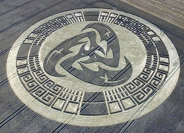 Another World Crop Circle Arts Drawn by Humans (37)