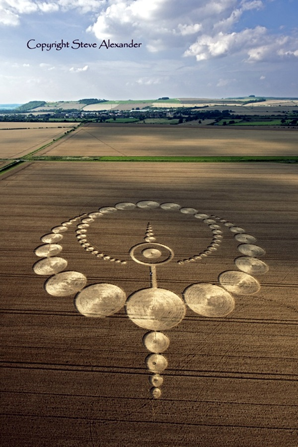 Another World Crop Circle Arts Drawn by Humans (5)