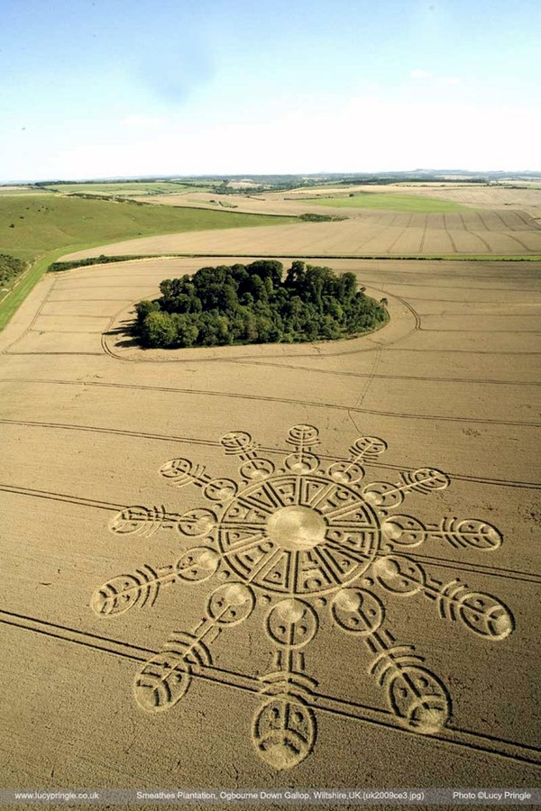 Another World Crop Circle Arts Drawn by Humans (9)