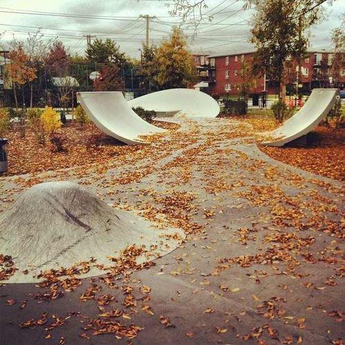skate park designs 12