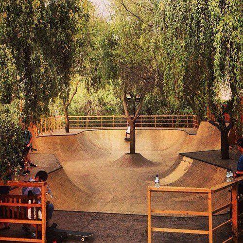 skate park designs 3