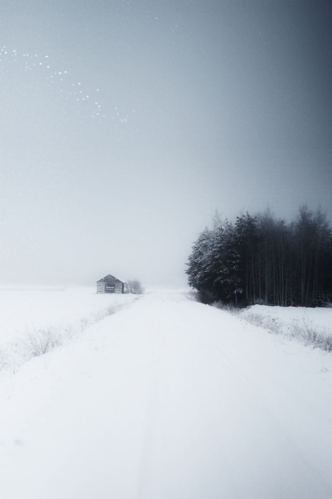 snow photography 10