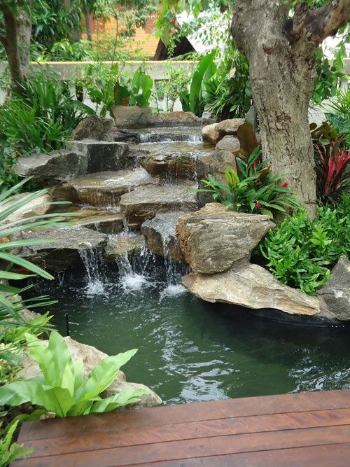 backyard waterfall 1