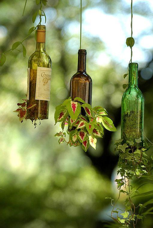 bottle garden 12