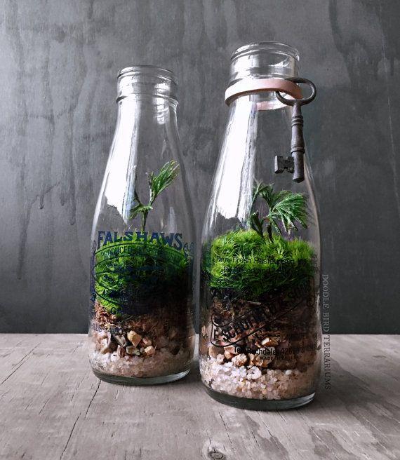 bottle garden 18