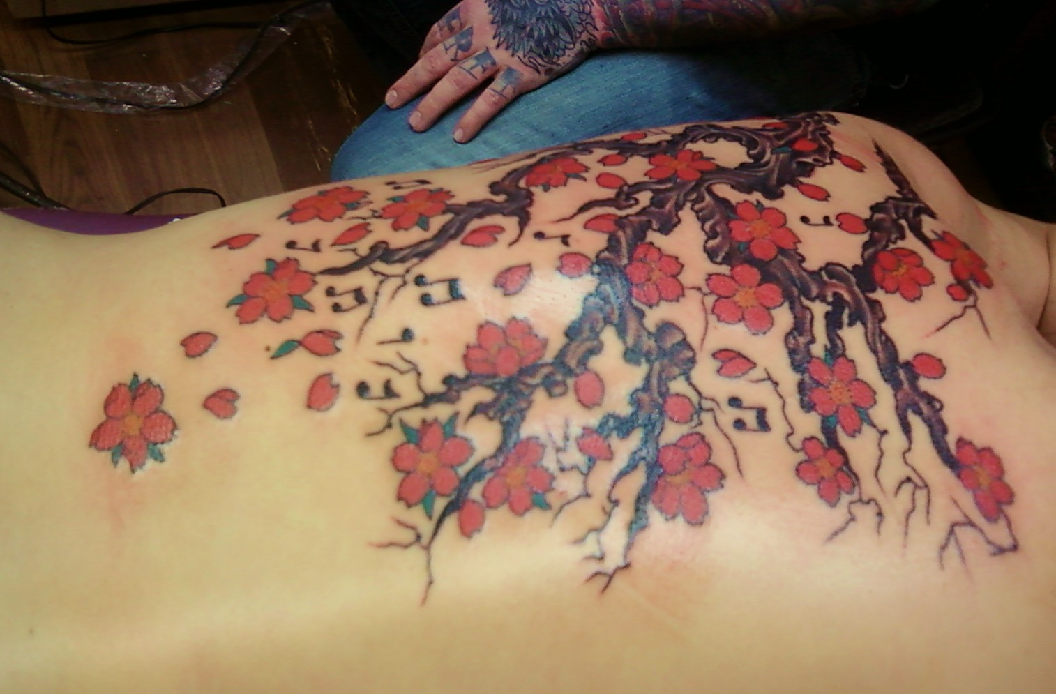 60 Cherry Blossoms Tattoo Designs And Ideas For Women Bored Art