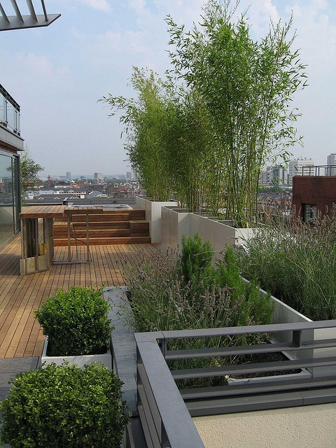 20 Rooftop Garden Ideas To Make Your World Better