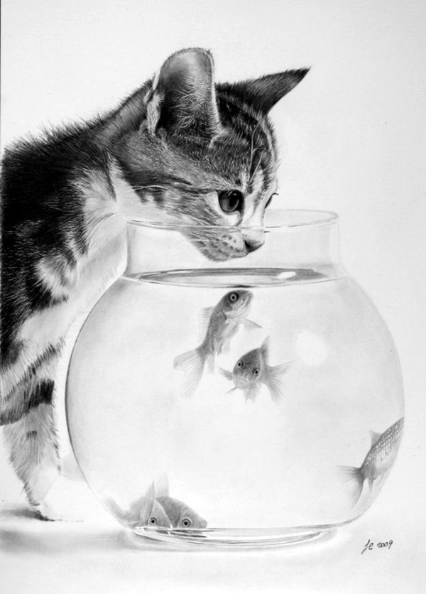 Realistic animal pencil drawings 15