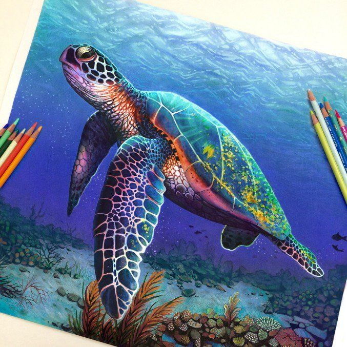 Use Those Colored Pencils To Sketch Your Imagination Bored Art
