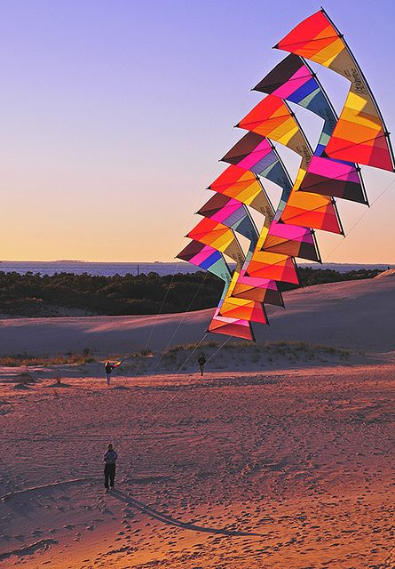 The Art Of Creating Kites And Flying Them Bored Art