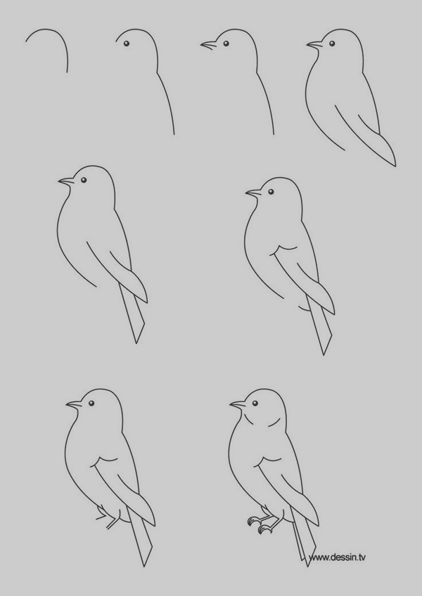 40 easy step by step art drawings to practice bored art