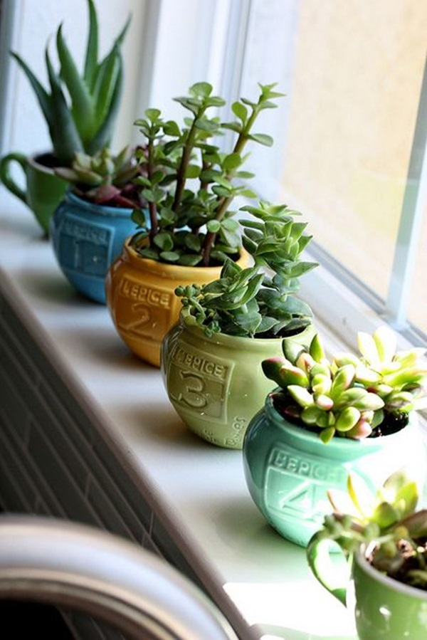 Delightful Indoor Gardening Ideas Part - 10: Smart Mini Indoor Garden Ideas (15)