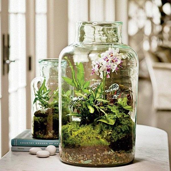 Nice Smart Mini Indoor Garden Ideas (20)