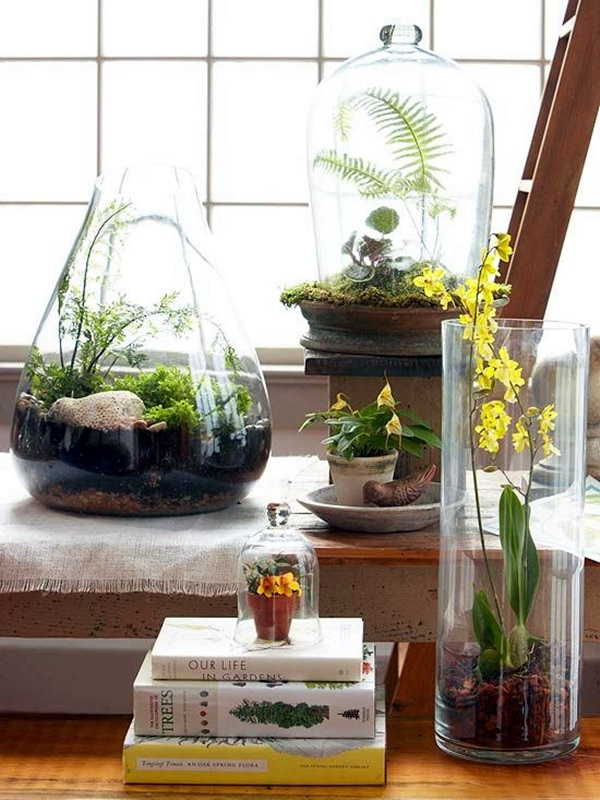 40 smart mini indoor garden ideas bored art for Indoor mini garden ideas