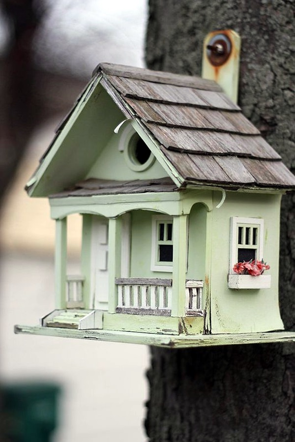 Beautiful Bird House Designs You Will Fall in Love with (27)