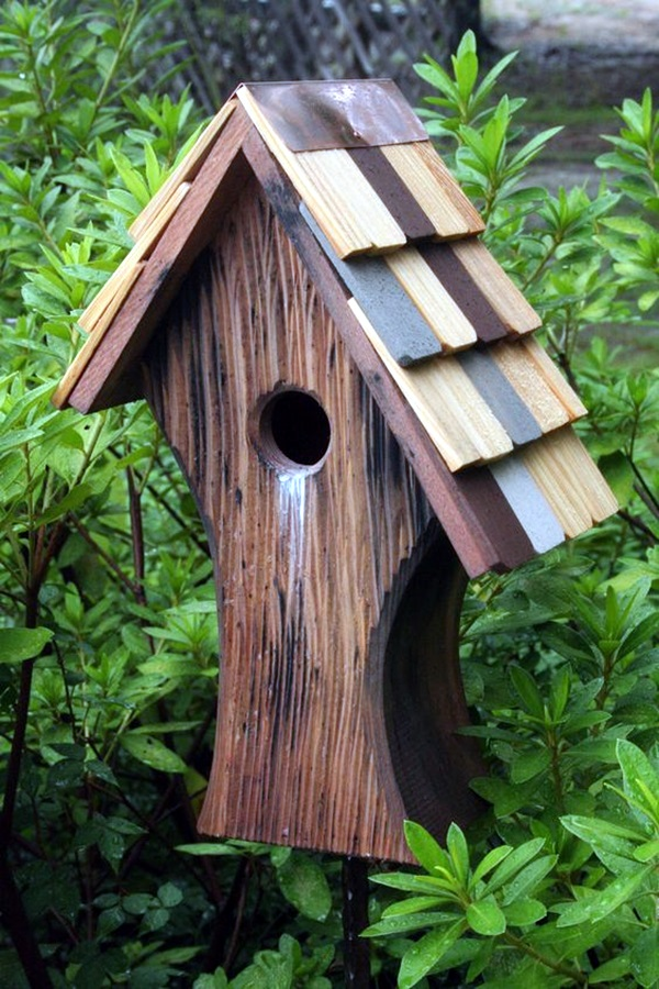 Beautiful Bird House Designs You Will Fall in Love with (33)
