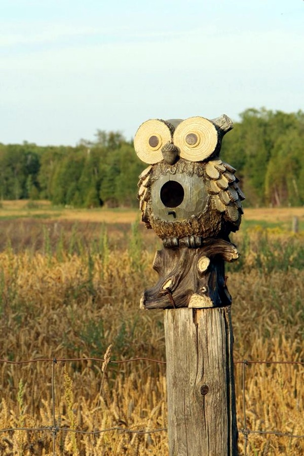 Beautiful Bird House Designs You Will Fall in Love with (44)