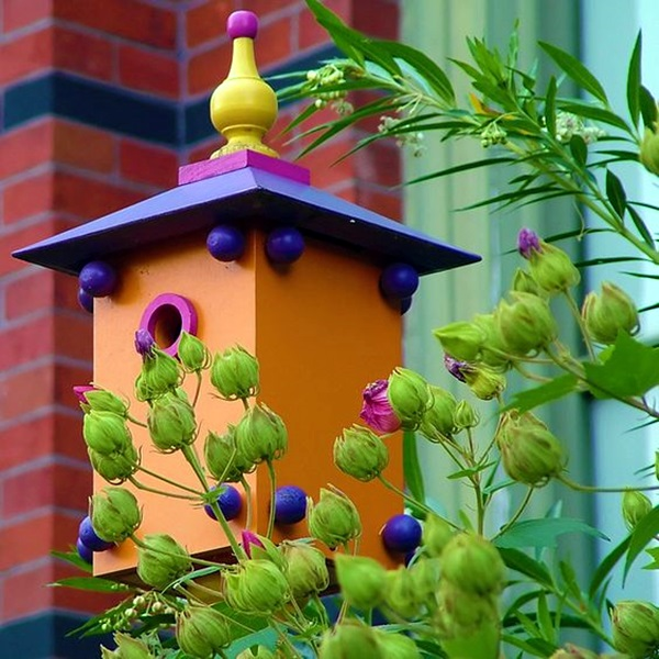 Beautiful Bird House Designs You Will Fall in Love with (9)