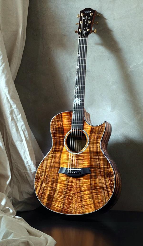 Beautiful and Creative Guitar Artworks (23)