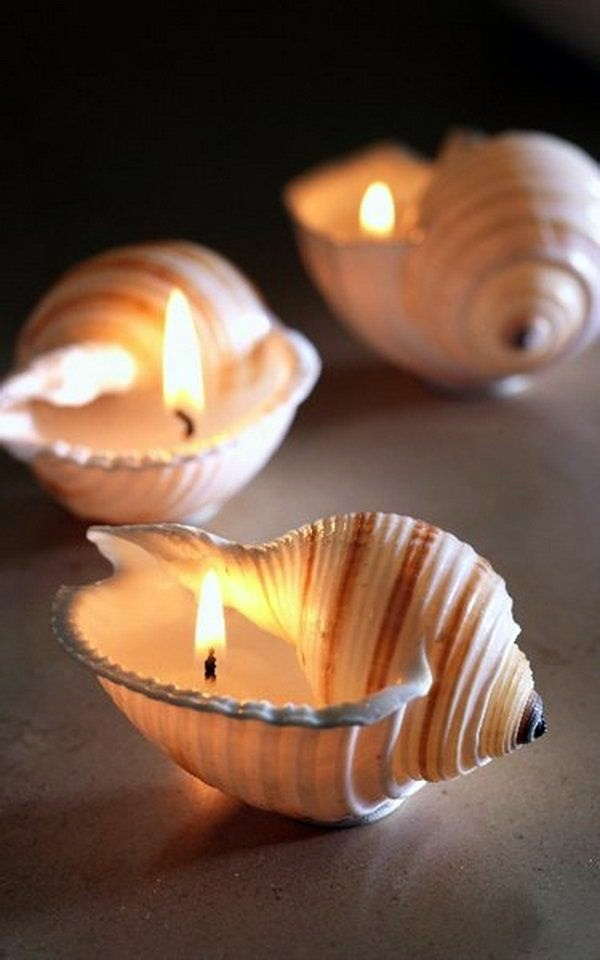 Beautiful and Magical Sea Shell Craft Ideas (33)