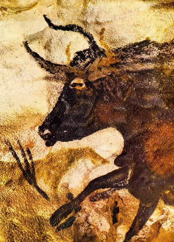 cave paintings 31