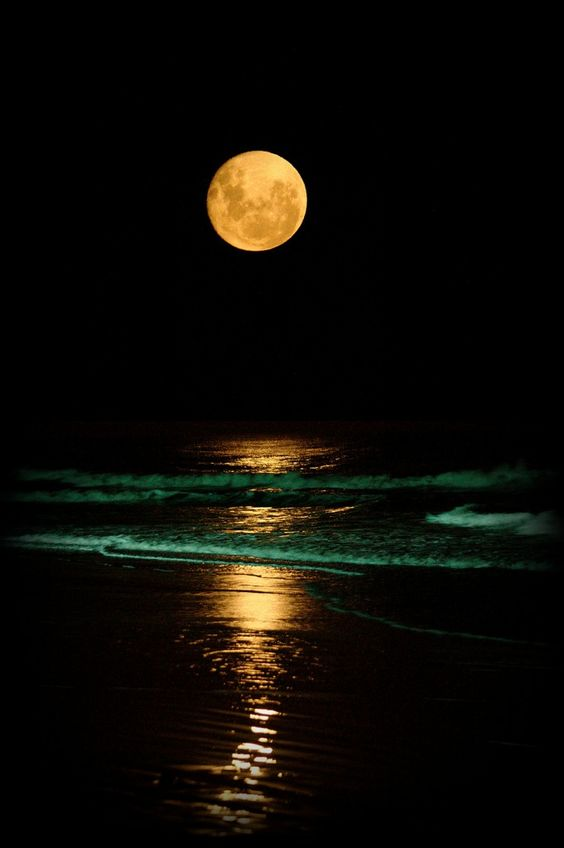 full moon photography 17