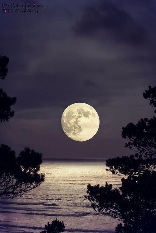 full moon photography 22