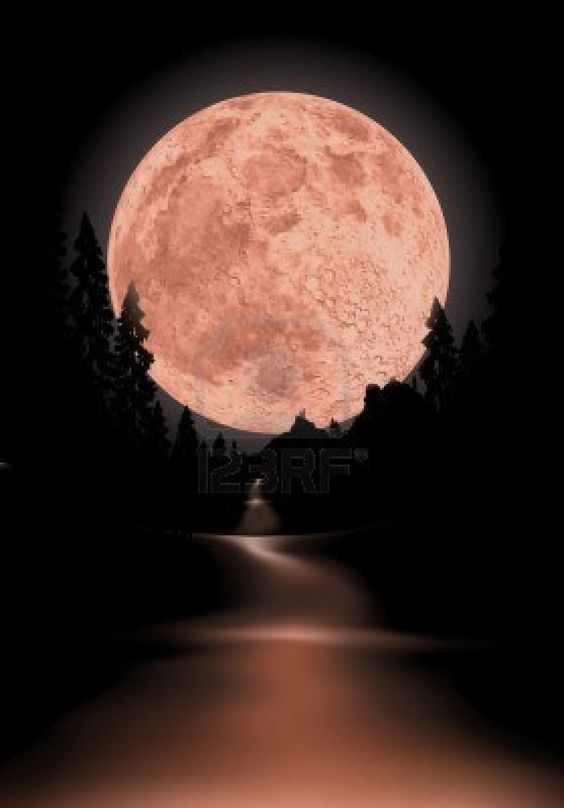 full moon photography 25