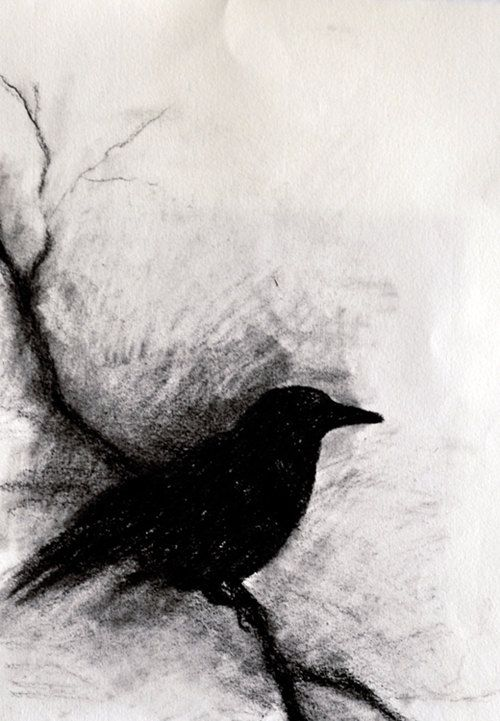 charcoal drawings 14