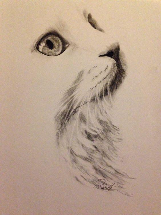 charcoal drawings 16