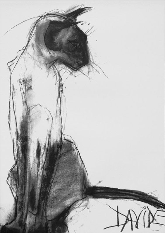 charcoal drawings 7
