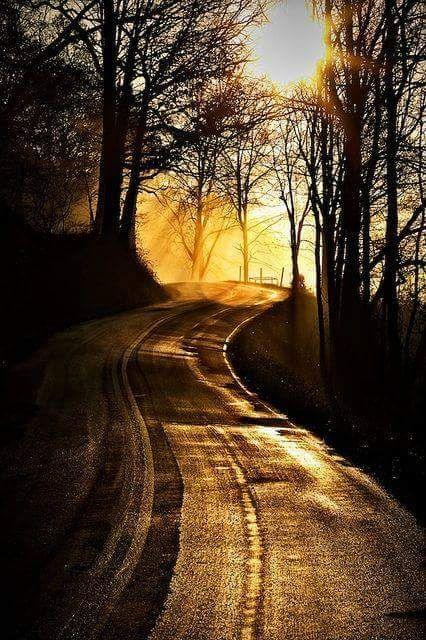 scenic roads photography 3