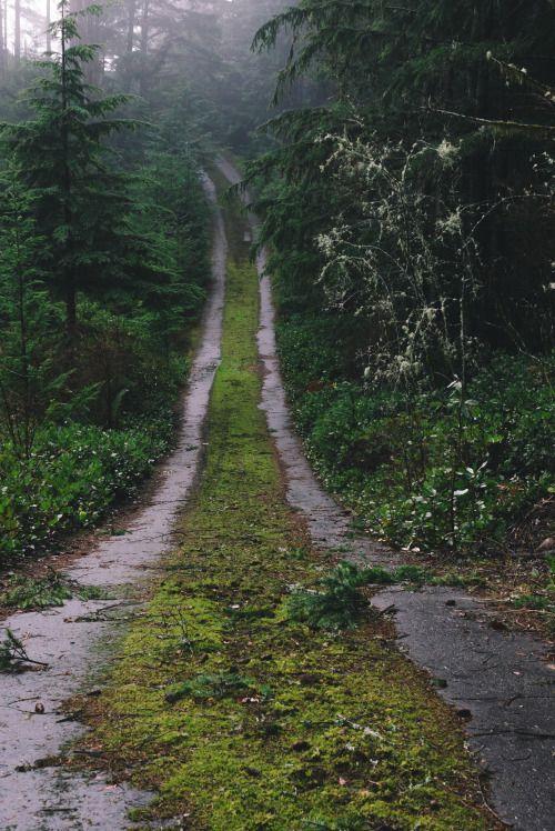 scenic roads photography 6