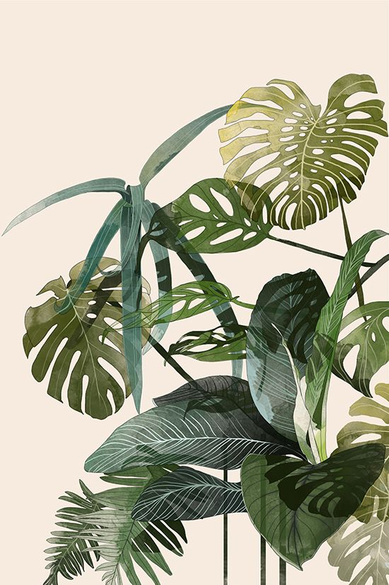 botanical art 40