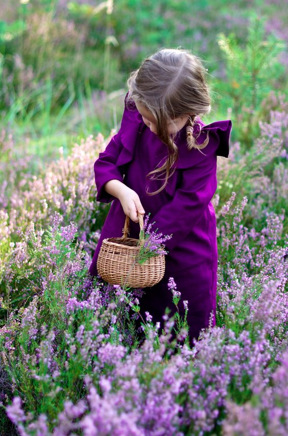 picking flowers