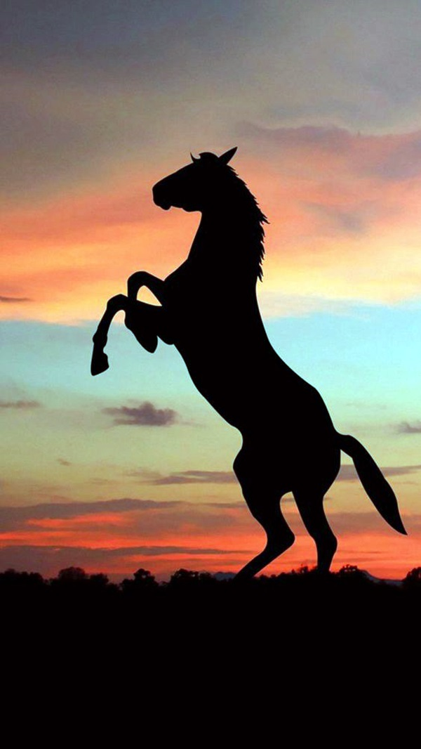 Amazing Silhouettes Art For Inspiration (23)