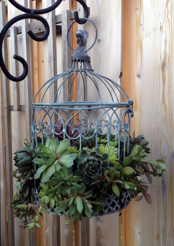 Elegant DIY Hanging Planter Ideas For Indoors (10)