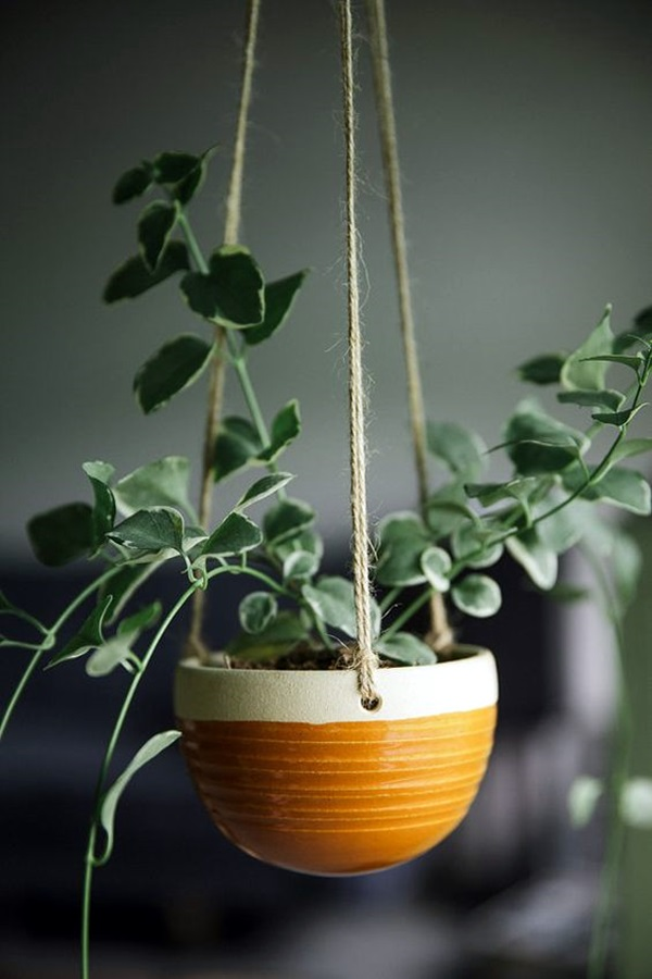 Elegant DIY Hanging Planter Ideas For Indoors (22)