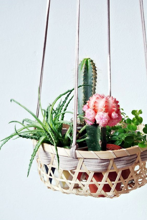 Elegant DIY Hanging Planter Ideas For Indoors (23)