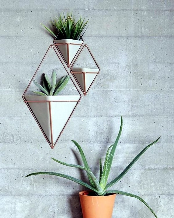 Elegant DIY Hanging Planter Ideas For Indoors (7)