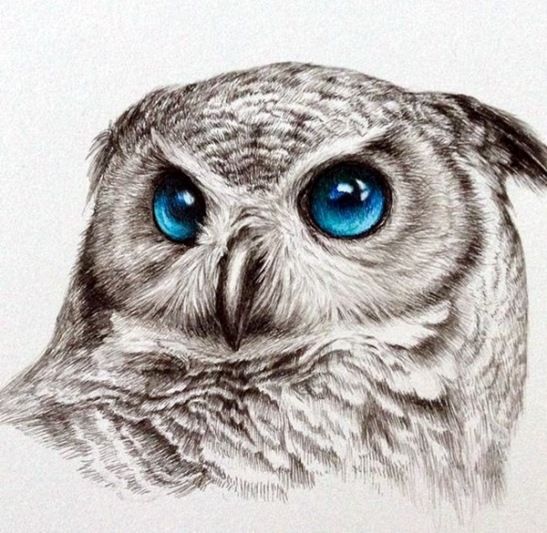 color pencil drawing Examples (11)