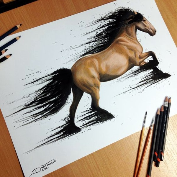 color pencil drawing Examples (15)