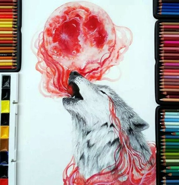 color pencil drawing Examples (17)